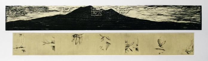 La mia casa, i miei giorni(solo in alcuni giorni) Xilografia-Legno di filo- e bulino su rame